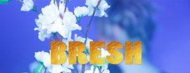 Fiesta Bresh